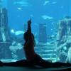 Atlantis, The Palm Brings Back The Biggest Underwater Yoga Class In Dubai