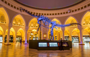 Dubai to Witness Middle East's First Dinosaur Auction