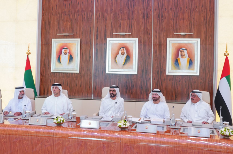 Cabinet Forms Committee to Implement VP's Directives